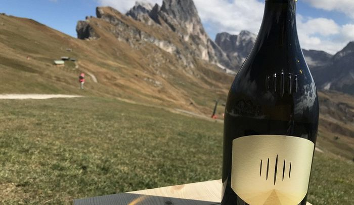 Vino: nasce Troy, nuovo Chardonnay di montagna