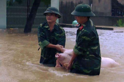 Il tifone Damrey in Vietnam ha fatto almeno 61 morti