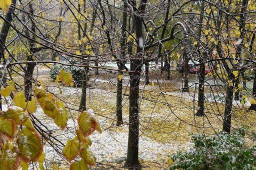 E' arrivato il freddo (e a Bologna la prima neve)