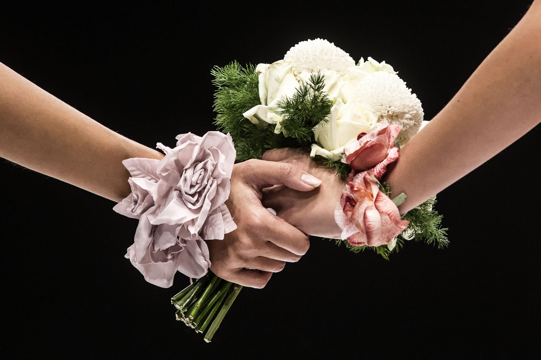 Austria: da Alta Corte ok alle nozze gay