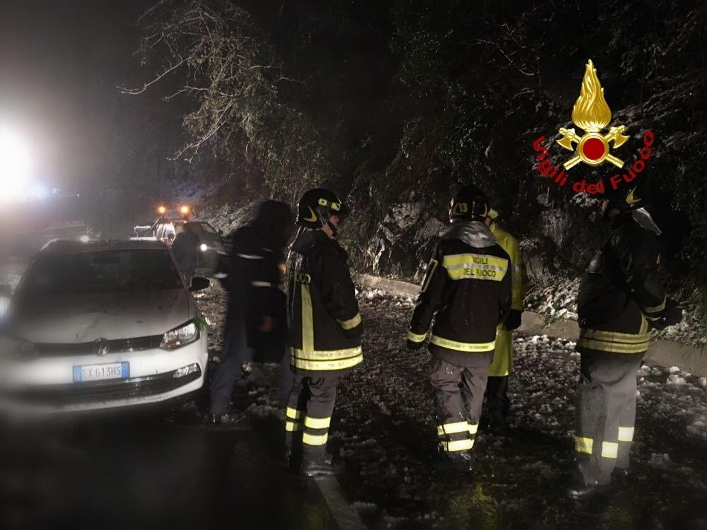 Cade albero, ferita automobilista