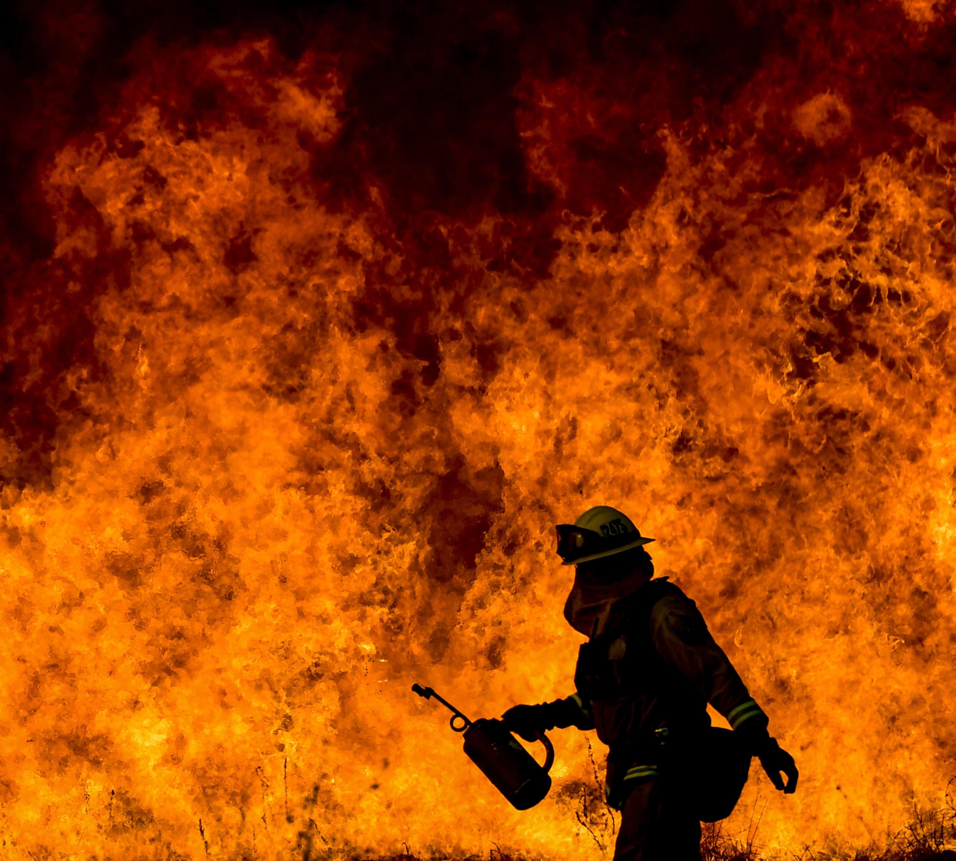 California devastata dagli incendi