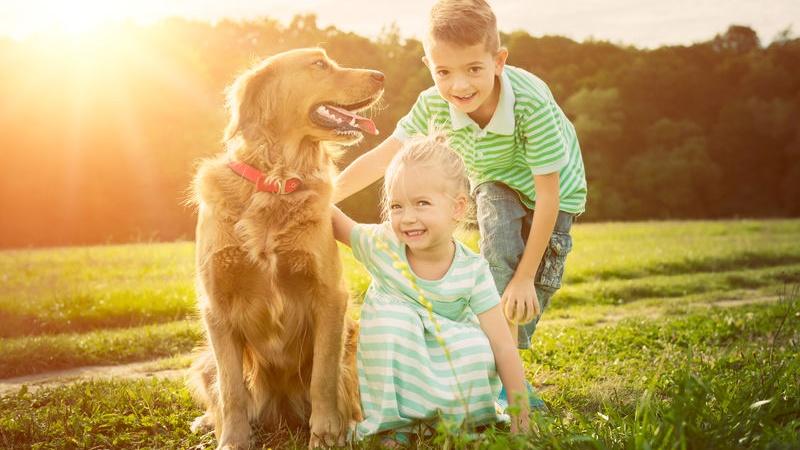 961b7aa175f8 10 razze di cani adatti per i bambini