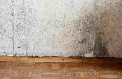 Pareti D Acqua Per Interni : Muffa sui muri per perdite dacqua: cosa fare per rimediare