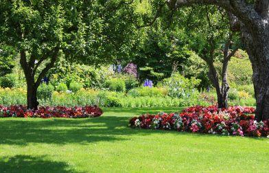 Progettare Il Giardino Gratis : La progettazione di giardini e parchi