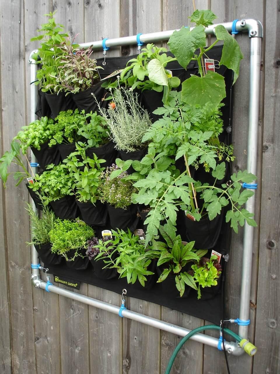 10 idee fai da te per realizzare un giardino verticale