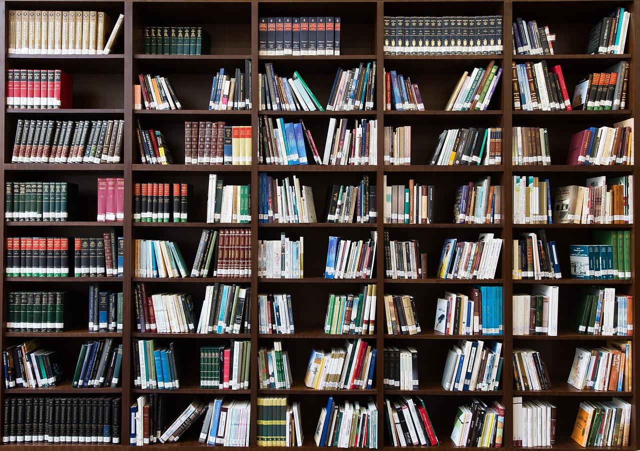 Librerie in cartongesso o muratura: quanto costa realizzarne una?