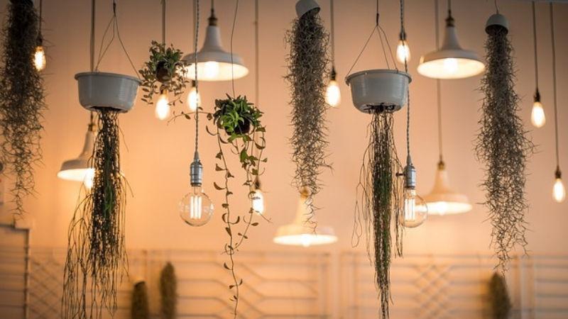 Illuminazione per piante lampade coltivazione indoor per piante