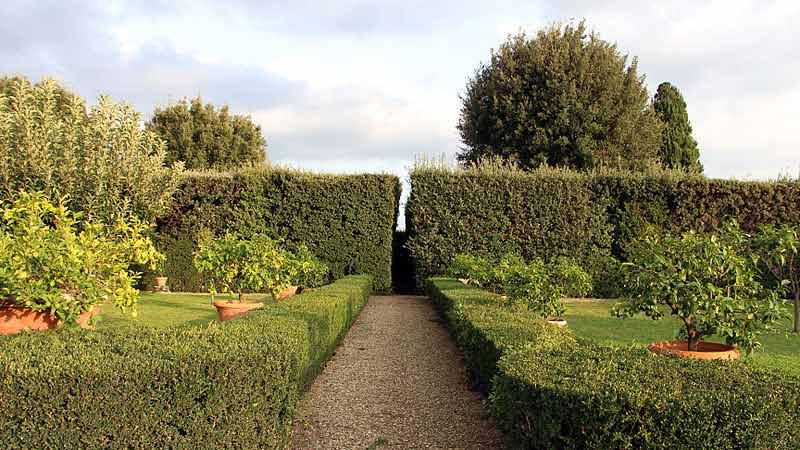 Idee per il vialetto del tuo giardino