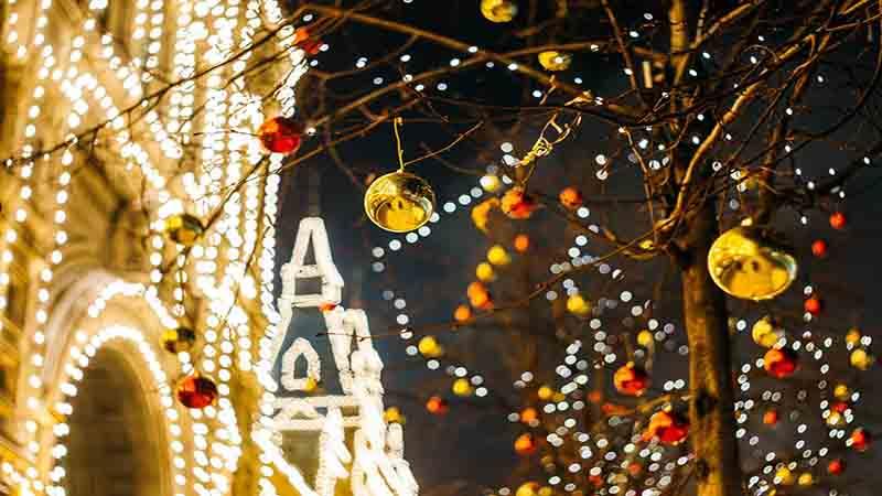 Per natale mila luci nel giardino delle meraviglie di ceraso