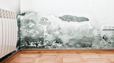 Pareti D Acqua Per Interni : Muri umidi? ecco cosa fare