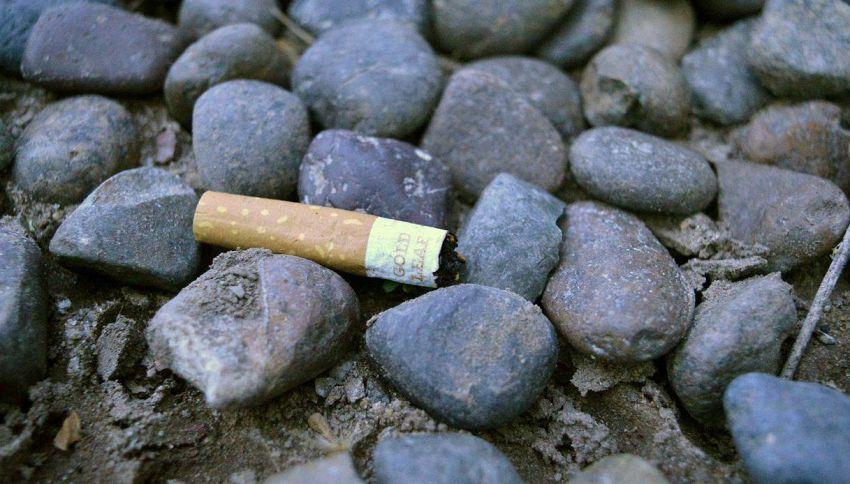 Rifiuti e creatività: come ti riciclo i mozziconi di sigaretta