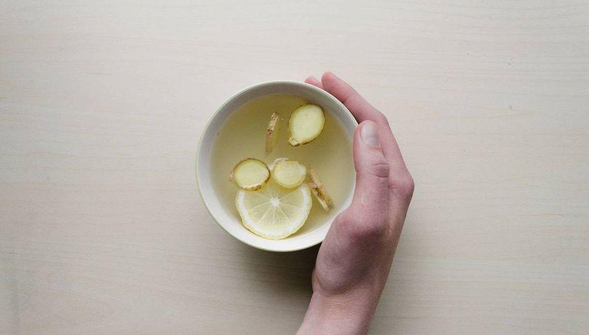 La tisana per bruciare i grassi a base di tè verde e zenzero