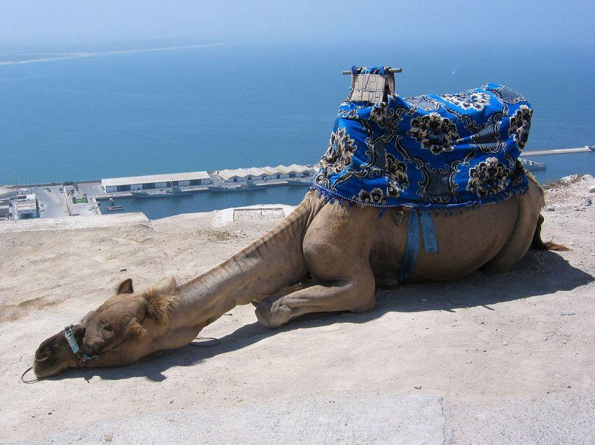 Vacanze ad Agadir: uno sguardo agli hotel e alle offerte