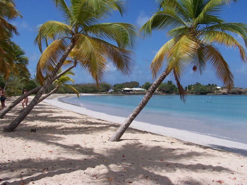 Antille, la meravigliosa isola di Santa Lucia: dove alloggiare
