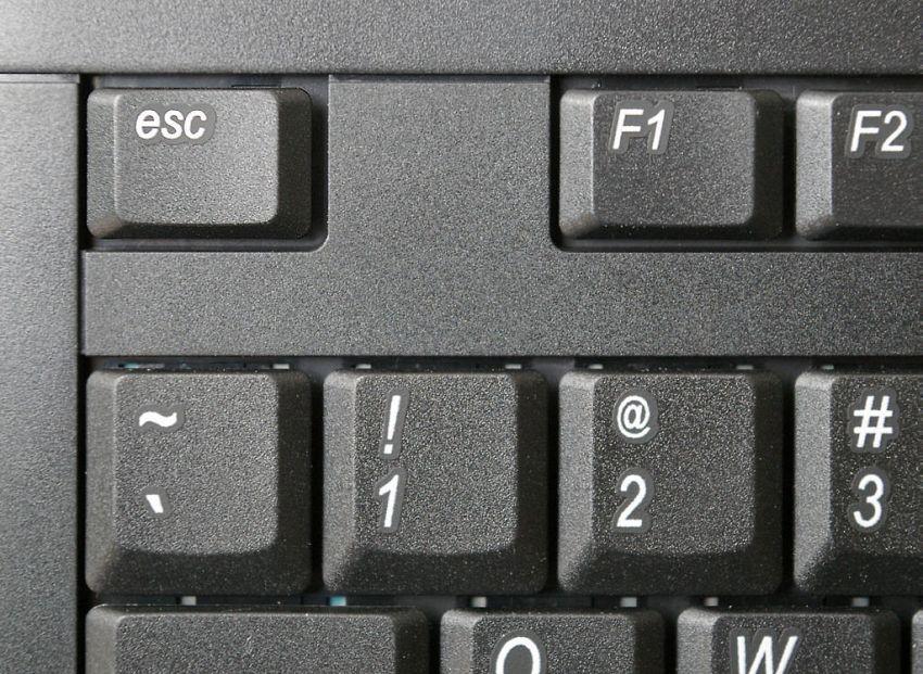 Il mistero della chiocciola: le origini del simbolo più usato su Internet