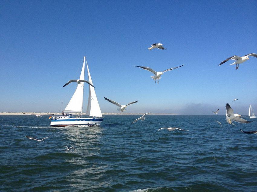 Giro del mondo in barca: tutto quello che c'è da sapere