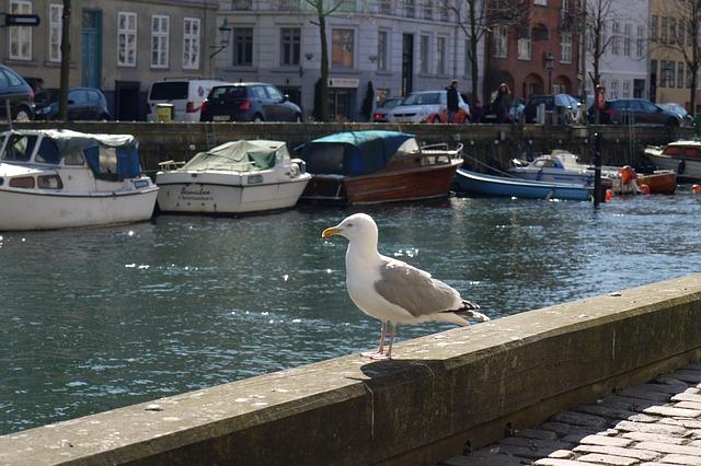 Cosa fare e quando andare in vacanza a Copenaghen