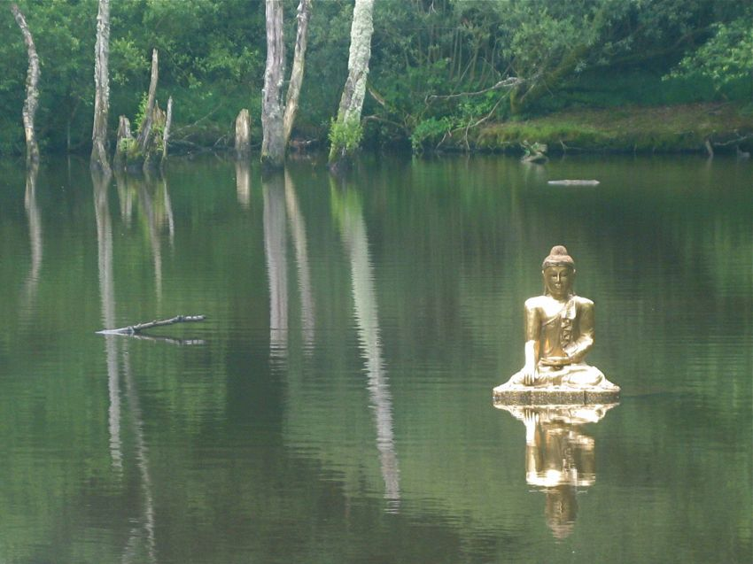 Arriva Buddha bot, il robot che dispensa lo zen