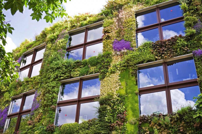 Idee per creare giardini verticali suggestivi e belli