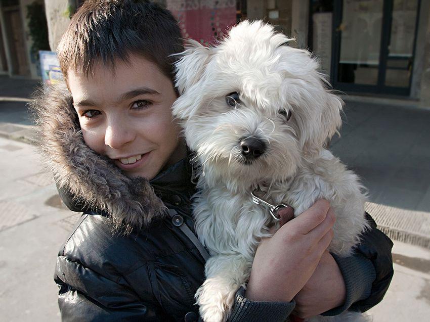 Il bambino che abbraccia il cane di nascosto: come amare gli animali