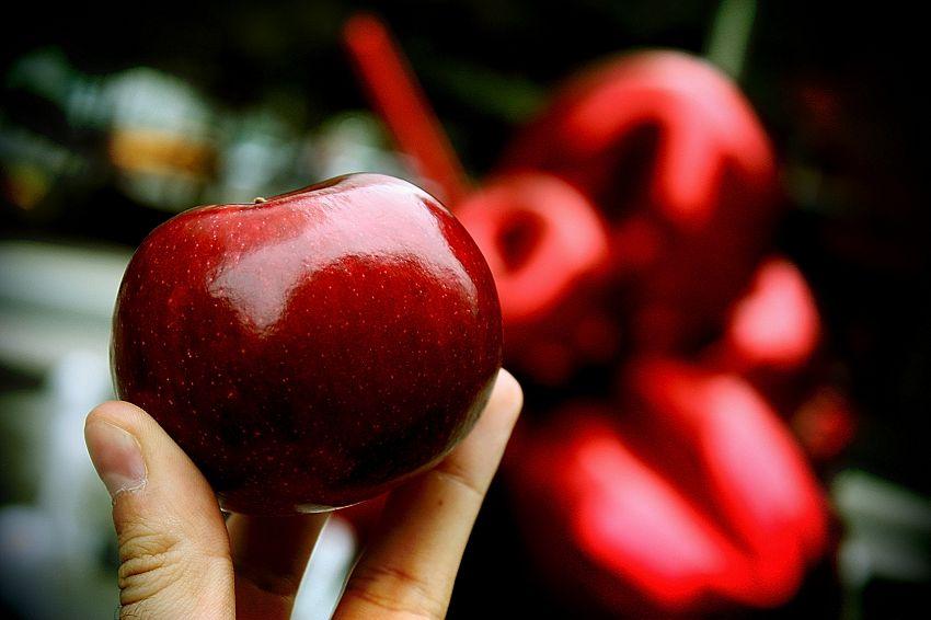 5 app gratuite e popolari per dimagrire questa estate