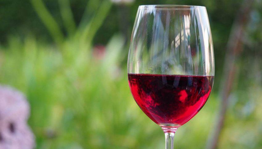 Bere un bicchiere di rosso equivale a un'ora di palestra, lo dice la scienza