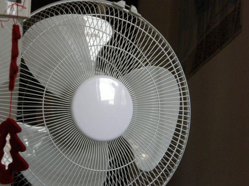 Ventilatore e bambini, 5 regole per usarlo senza rischi