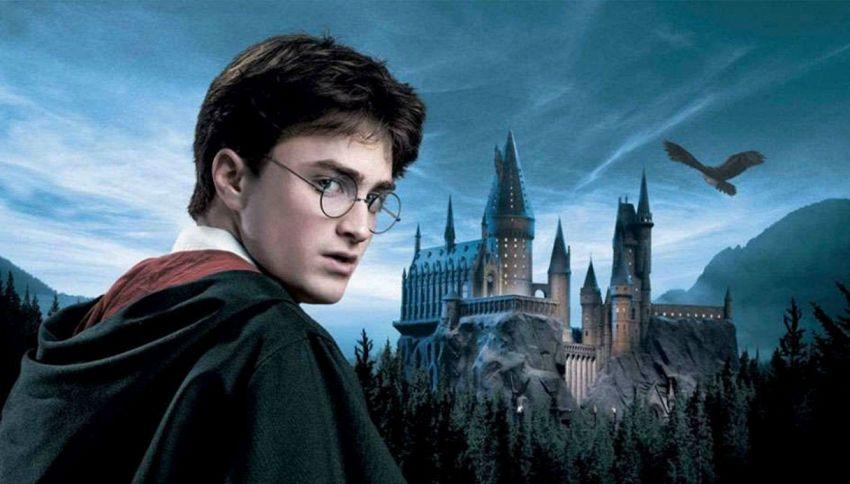 Harry Potter è impazzito nel ripostiglio e si è immaginato tutto. La teoria dei fan