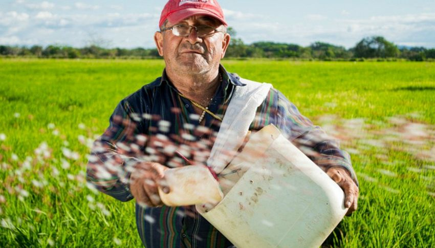 Il contadino cerca moglie 2a edizione: Ilenia Lazzarin alla conduzione