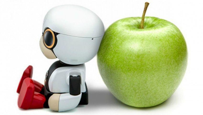 Kirobo, il robot bambino per donne senza figli o coppie anziane