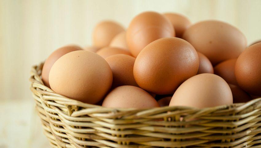 Uova pericolose: come leggere l'etichetta