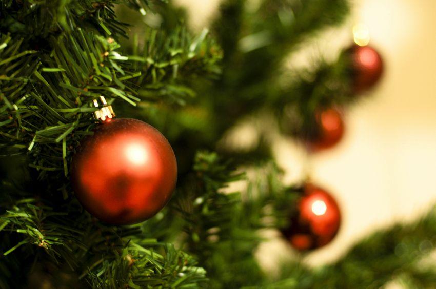 Come trasportare l'albero di Natale