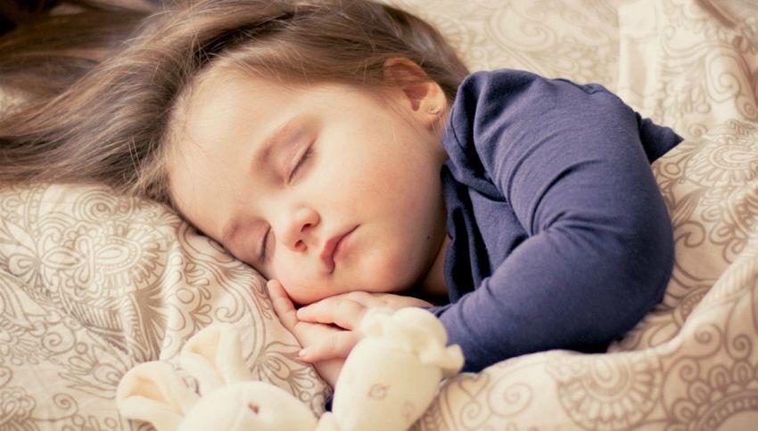 A cosa serve il sonno? Cancella le cose inutili