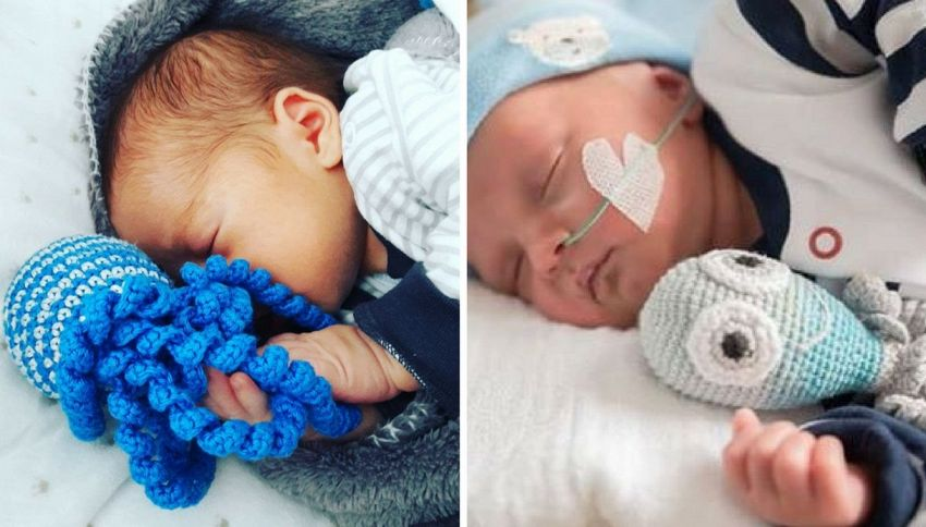 Un polpo per aiutare i bambini nati prematuri