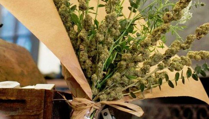 Il bouquet di marijuana e lavanda: un regalo stupefacente