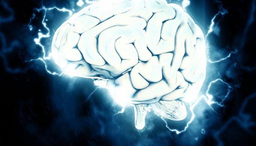 I cibi per tenere in forma il tuo cervello