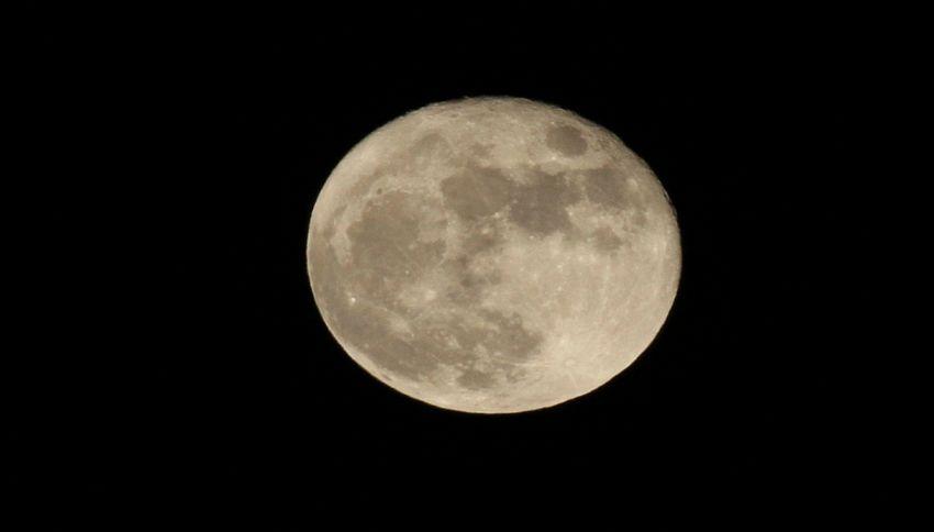 Musk invierà intorno alla Luna 2 turisti nello spazio nel 2018
