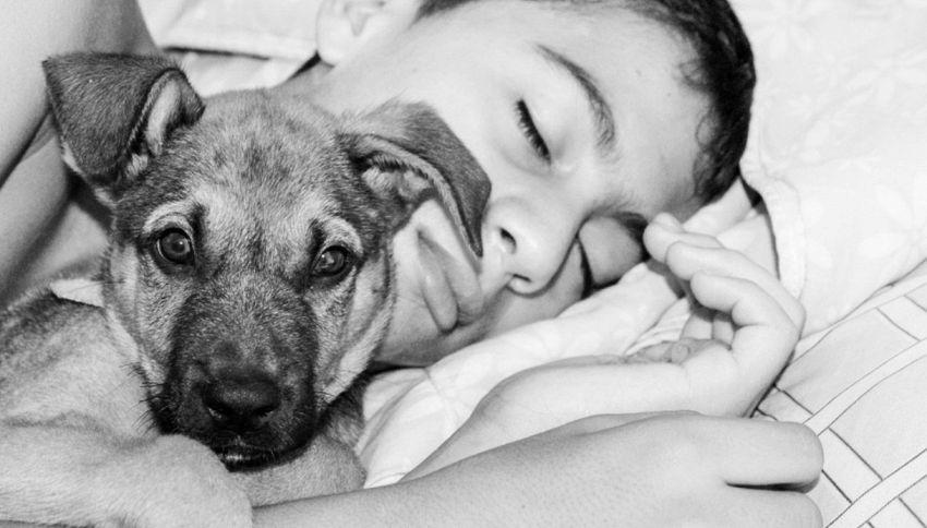 E' corretto dormire con il proprio cane?