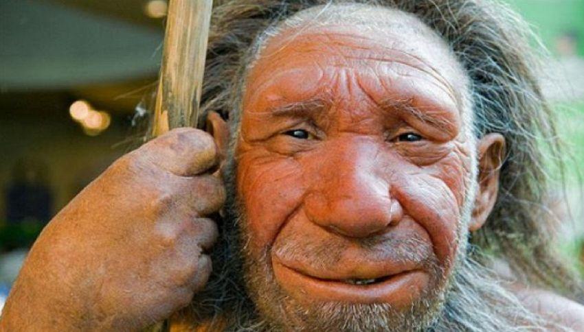 I Neanderthal usavano antibiotici e aspirine. La ricerca