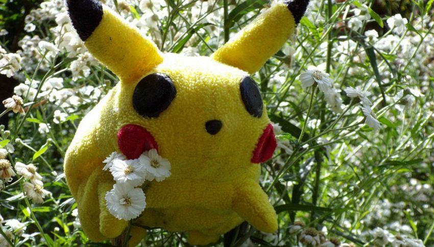Perché i Pokemon si chiamano così?