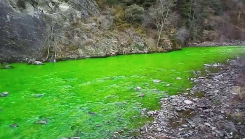Il fiume è verde, allarme e polemiche in Spagna