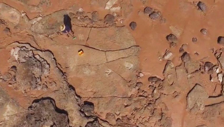 Scoperta l'orma di dinosauro più grande del mondo