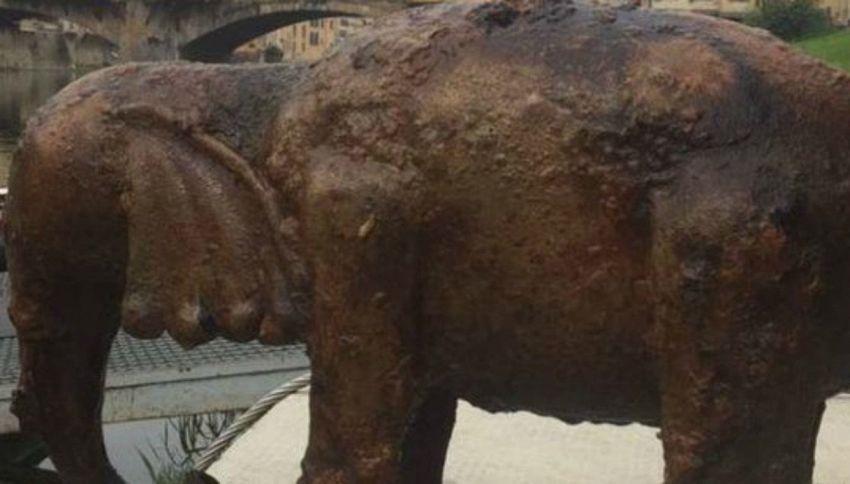 Il mistero dell'elefante di bronzo ritrovato sul fondo dell'Arno