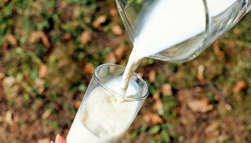 Come leggere la nuova etichetta del latte: le diciture