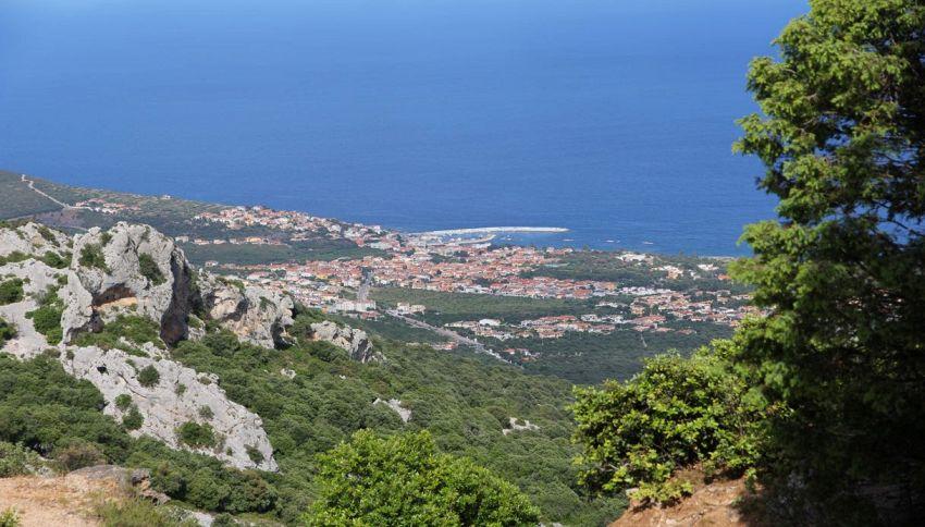 Cipriano, l'uomo che 30 anni pulisce un bosco della Sardegna