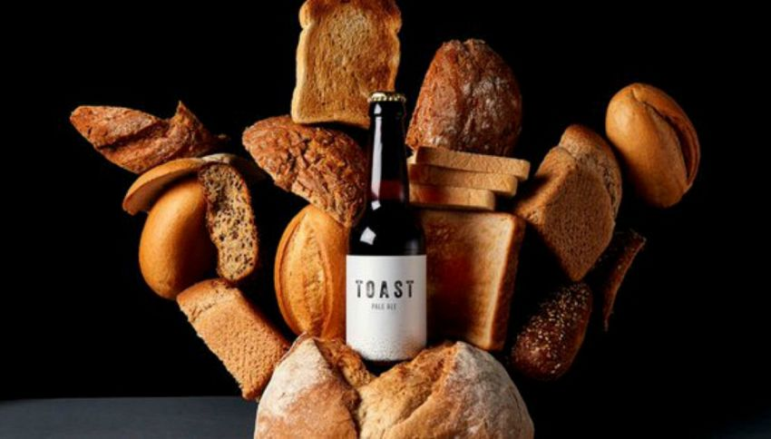 Toast: la birra fatta con gli avanzi di pane