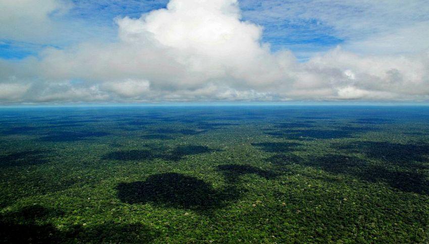 L'Amazzonia era un oceano 10 milioni di anni fa