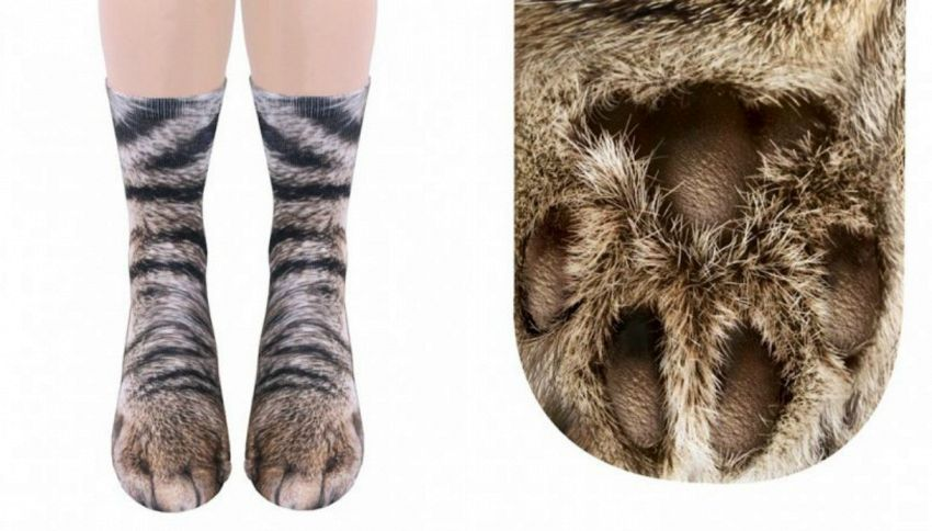 I calzini che trasformano i tuoi piedi in zampe di cane o gatto