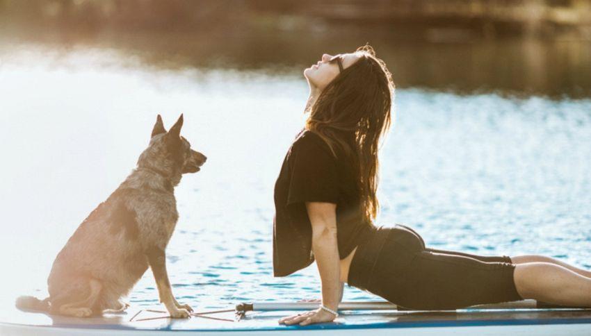 Arriva il Doga, lo yoga da fare con il cane